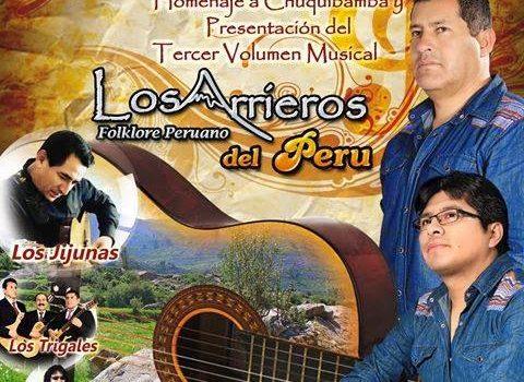Musica Andina 28